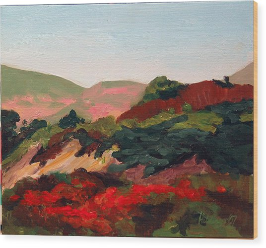 Santa Maria Hills Wood Print by Deborah Hildinger