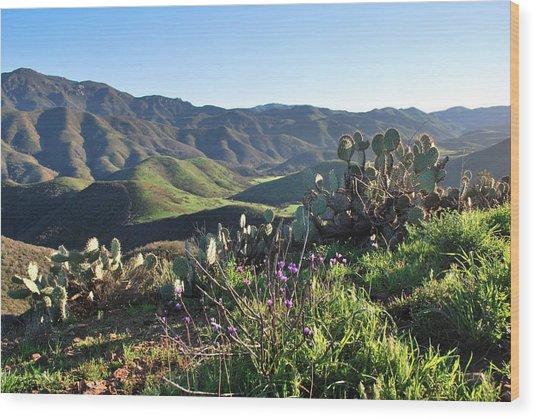 Santa Monica Mountains - Cactus Hillside View Wood Print