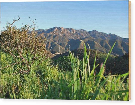 Santa Monica Mountains Green Landscape Wood Print