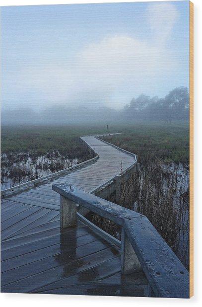 Santa Rosa Vernal Pools Wood Print
