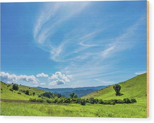 Santa Teresa County Park Wood Print