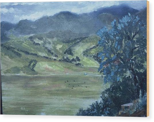Santa Yanez Valley       First Day Of Spring Wood Print by Bryan Alexander