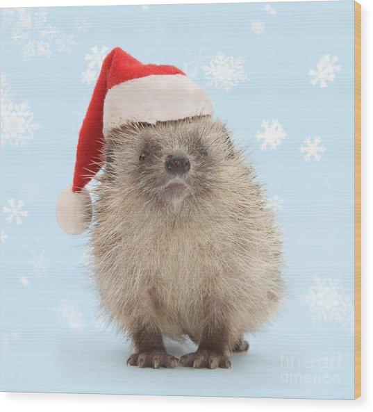Santa's Prickly Pal Wood Print