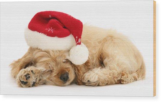 Santa's Sleepy Spaniel Wood Print