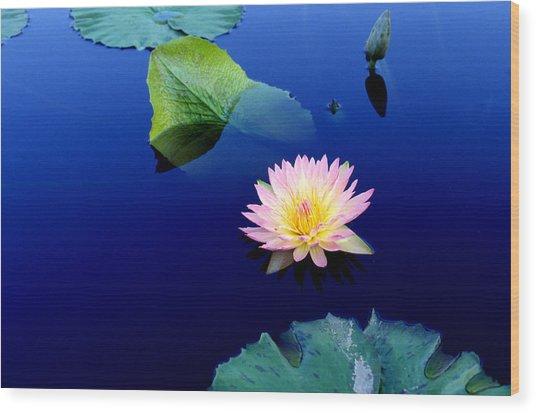 Sapphire Blue Wood Print