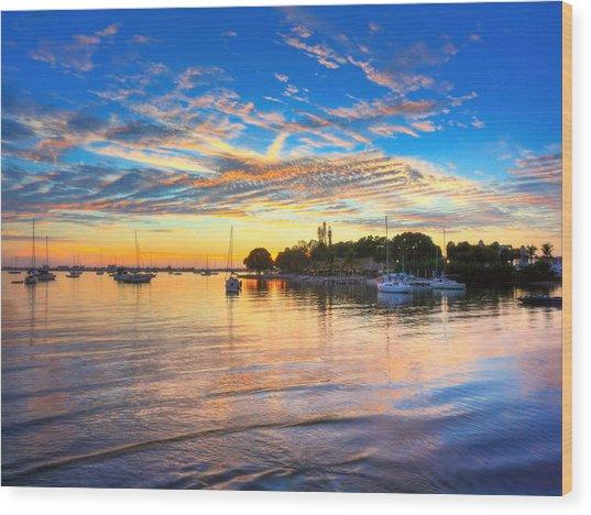 Sarasota Bay Wood Print by Jenny Ellen Photography