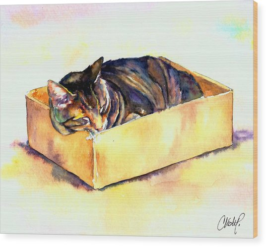 Sassy Sleeping Wood Print