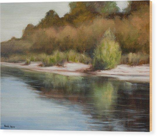 Satilla River Reflections Wood Print
