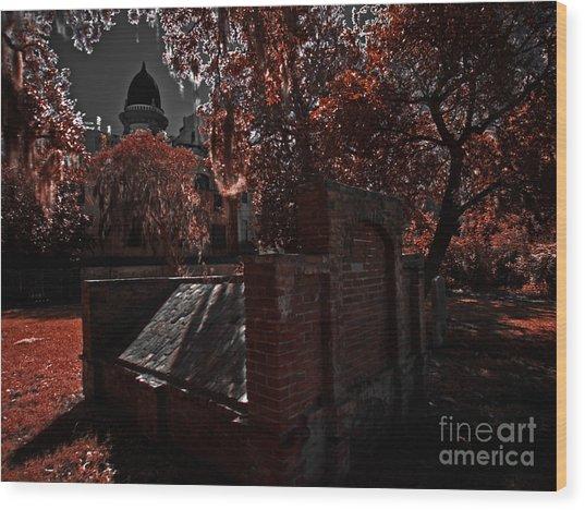 Savanna Georia Colonial Park Cemetery Color Infrared 500 Wood Print by Rolf Bertram