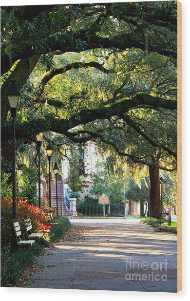 Savannah Park Sidewalk Wood Print