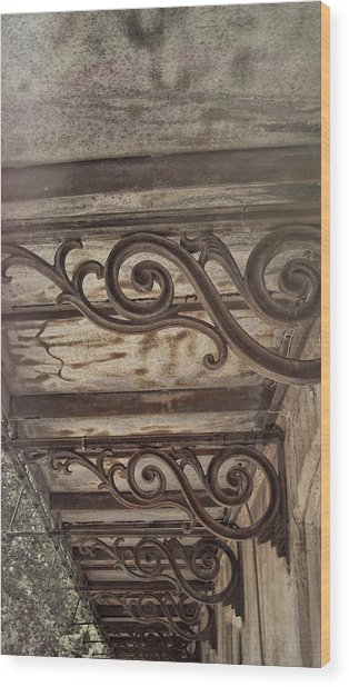 Savannah Scroll Wood Print by JAMART Photography
