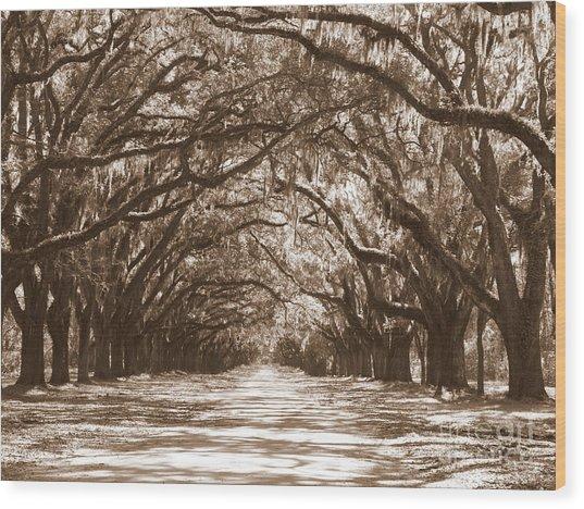 Savannah Sepia - Glorious Oaks Wood Print