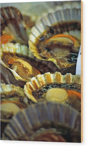 Scallops At Rialto Market In Venice Wood Print by Michael Henderson