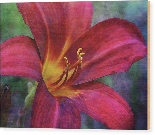 Scarlet And Gold Dust 3716 Idp_2 Wood Print
