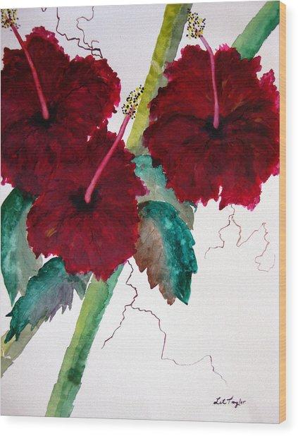 Scarlet Red Wood Print