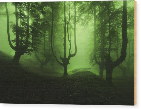 The Funeral Of Trees Wood Print