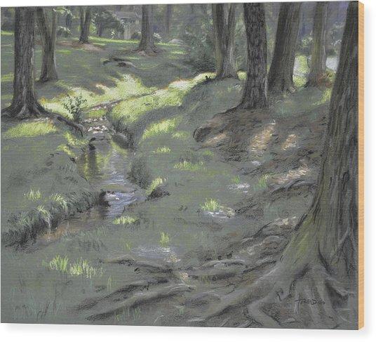 Scattered Light Wood Print