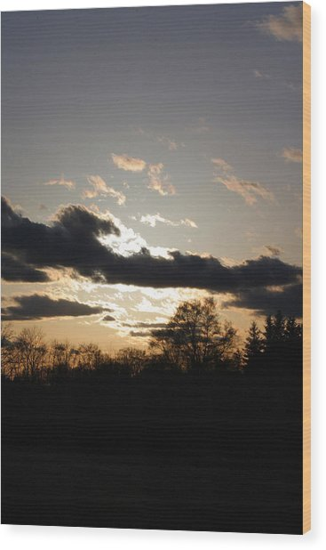 Scattered Shadows Wood Print by Mark  France