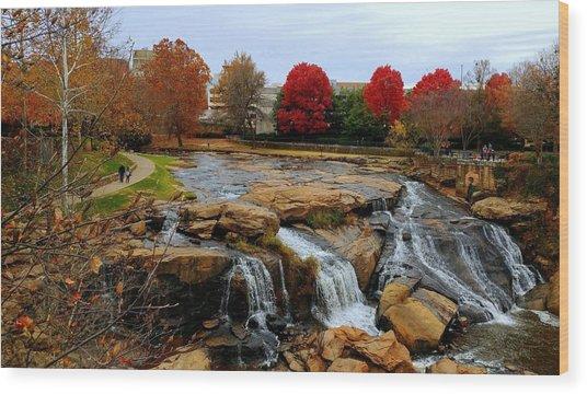 Scene From The Falls Park Bridge In Greenville, Sc Wood Print