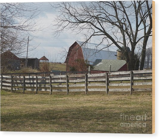 Scene On The Farm Wood Print