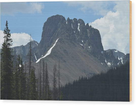 Mountain Scenery Hwy 14 Co Wood Print