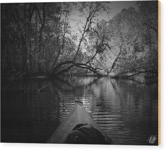 Scenes From A Kayak, No. 8 Wood Print