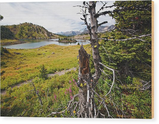 Scenic Alpine Lake And Meadow Wood Print by George Oze