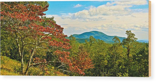 Scenic Overlook Blue Ridge Parkway Wood Print