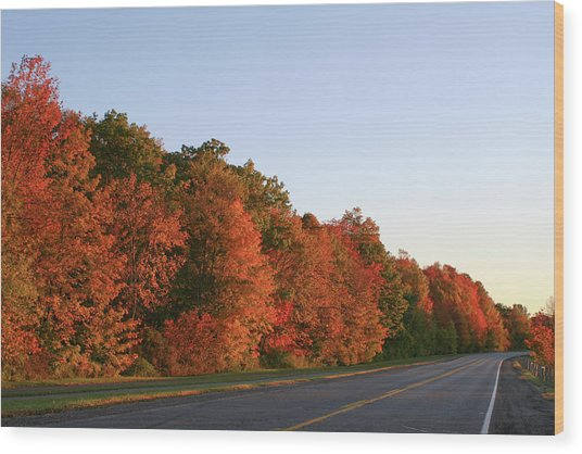 Scenic Route Wood Print