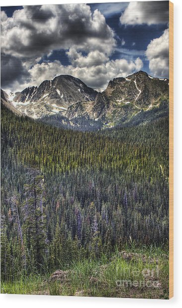 Scenic View From The Highway Wood Print
