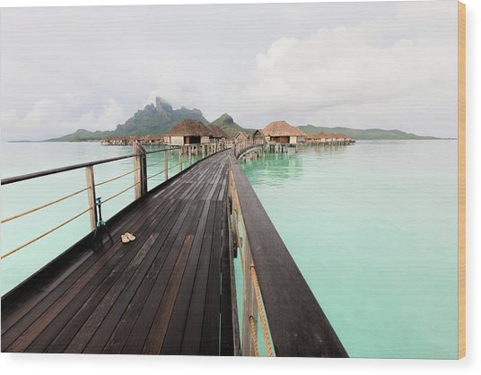 Scenic Walk To The Bungalow Wood Print