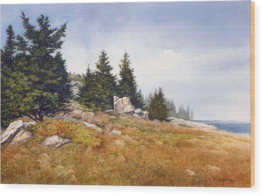 Schoodic Coast Wood Print