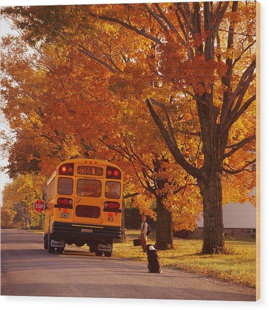 Good Bye Friend I. Vermont Wood Print