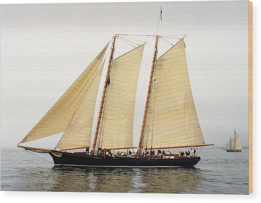 Schooner America Wood Print