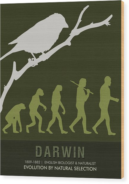 Science Posters - Charles Darwin - Biologist, Naturalist Wood Print