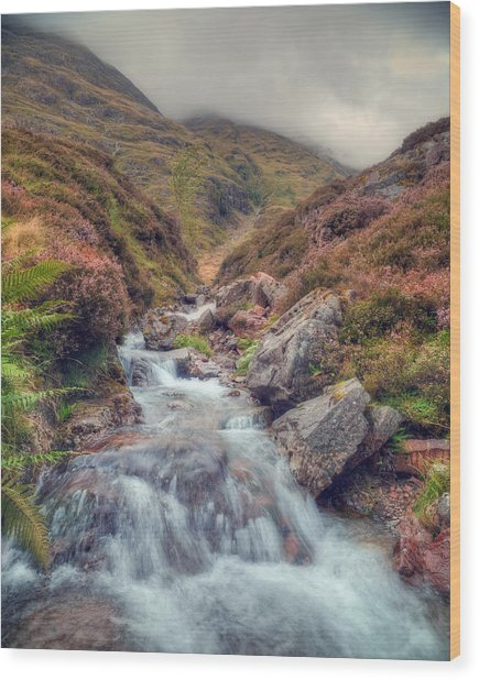 Scottish Mountain Stream Wood Print