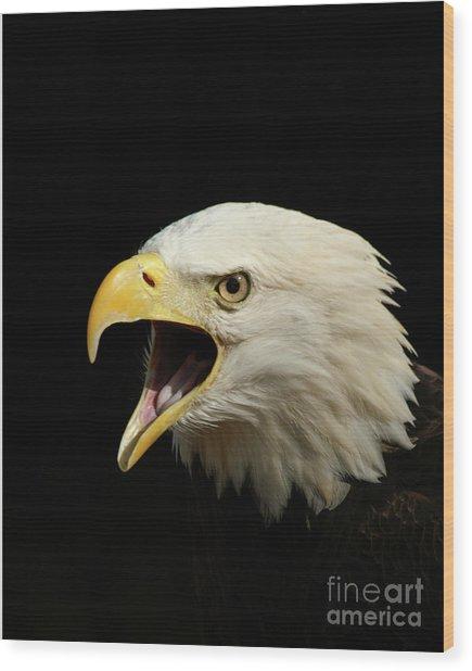 Screaming Eagle Wood Print