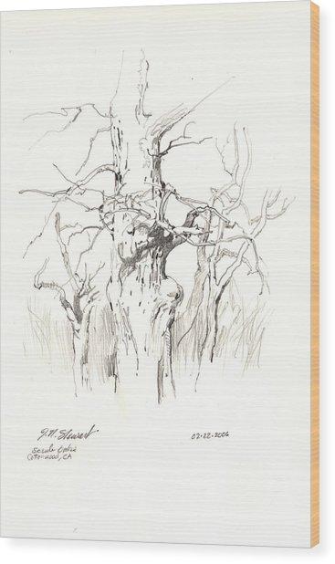 Scrub Oaks In Cottonwood Wood Print