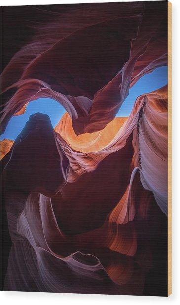 Sculptures Of Desert Wood Print