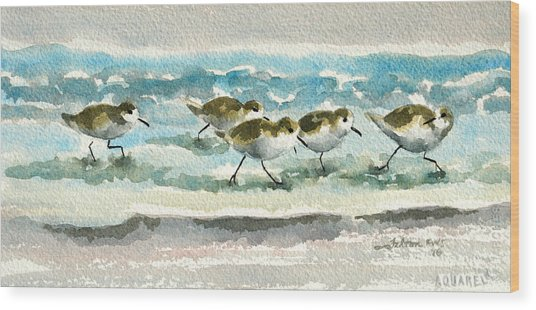 Scurrying Along The Shoreline 2  1-6-16 Wood Print
