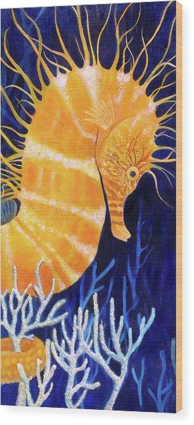 Sea Biscuit Wood Print by Samantha Lockwood