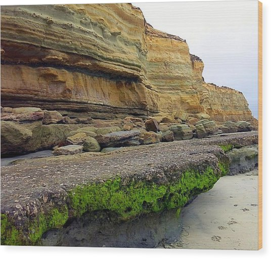 Sea Cliff Wood Print