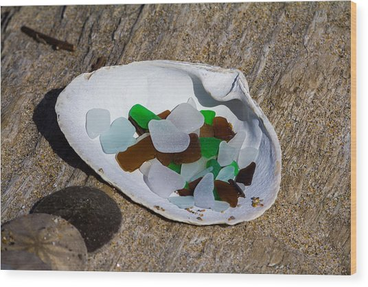 Sea Glass Treasure  Wood Print