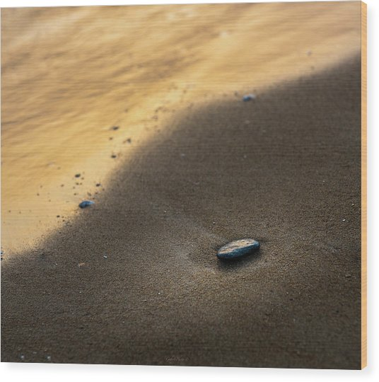 Sea Gold Wood Print
