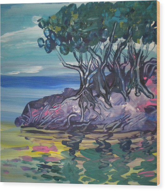 Sea Grapes By Lois Wood Print by Art Without Boundaries