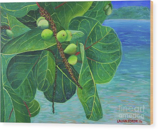 Sea Grapes Wood Print