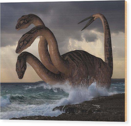 Sea Hydra Wood Print