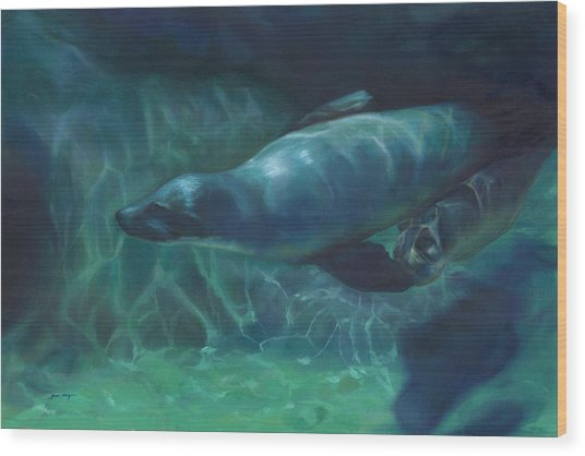 Sea Lion Mother And Baby Wood Print by Joan Hogan