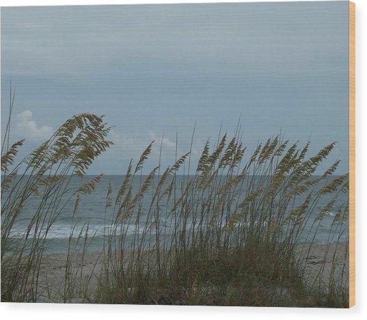 Sea Oats On Wrightsville Beach Wood Print