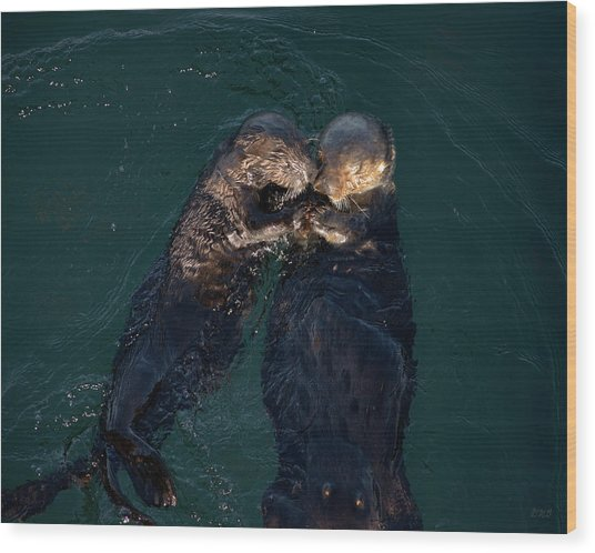 Sea Otters II Color Wood Print